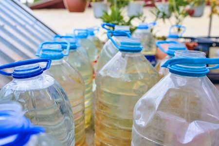 Plastic bottles with water for watering plants. Plastic bottles with water for watering plants in the garden