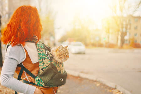 Redhead woman is walking down the street carrying a cat in a bag to the veterinary clinic 免版税图像
