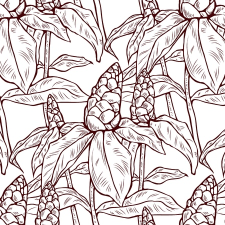 ginger flower plant: Illustration of exotic red flower with green leaves.