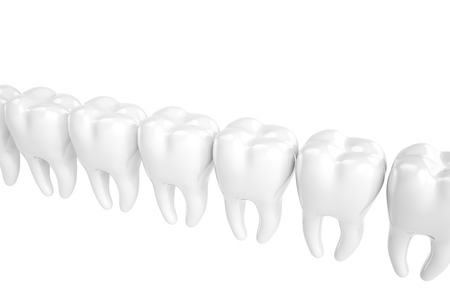 decayed: The molars built in row on a white background