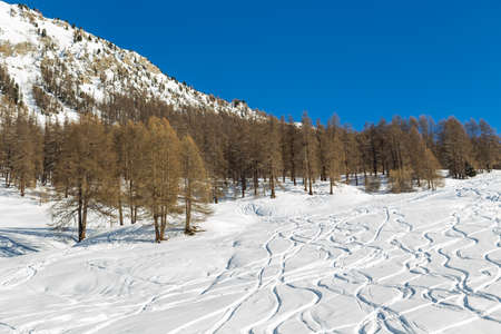 snowy landscape: Snowy landscape of Livigno Stock Photo