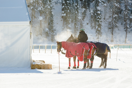 disciplines: St. Moritz - January 31.2015: Unidentified players compete at the 2015 St. Moritz Snow Polo World Cup