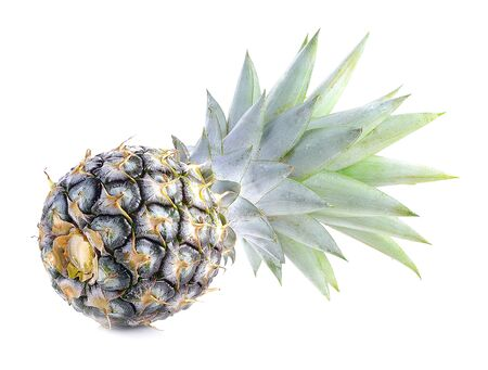 Green pineapple on isolated white background, unripe pineapple on white background