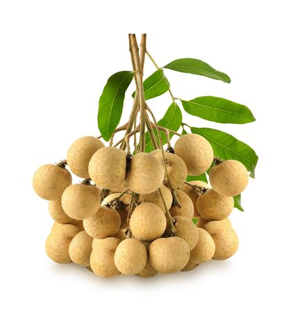 longan from the garden, isolated on a white background Stock Photo