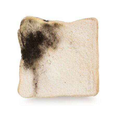 Mildew on a slice of bread. Stale bread on white background Reklamní fotografie