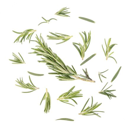 Rosemary isolated on white background, top view Imagens