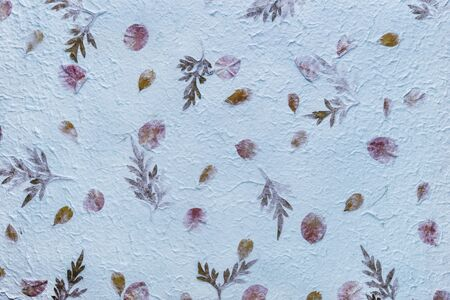 Blue mulberry paper with the texture of flowers and foliage is used as a background.