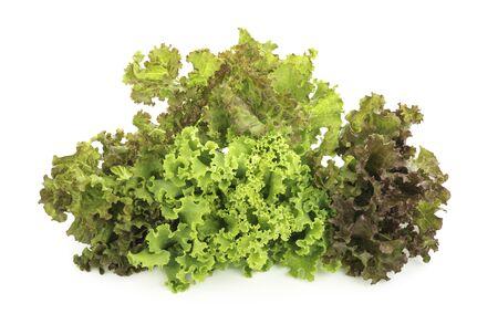 lettuce isolated on white background Reklamní fotografie