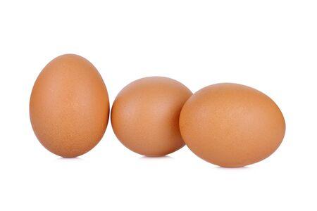 Chicken Egg , egg on white background
