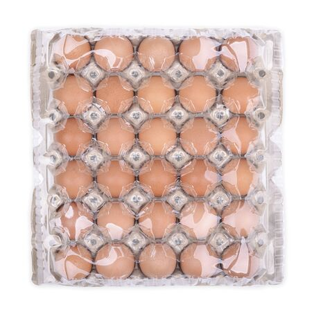 Hen egg panel isolated on white background, Top view