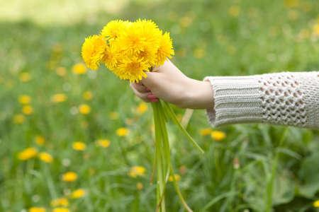 a bouquet of dandelions