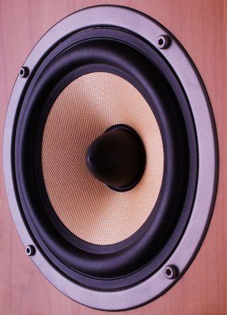 kevlar: Close-up photo of midbass speaker made of kevlar