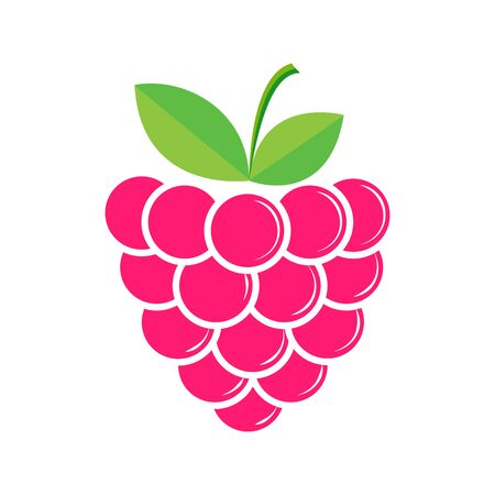 Raspberry, flat style for design and decoration Çizim