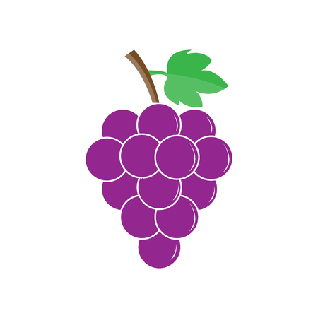 Bunch of grapes, color image, simple flat design 일러스트