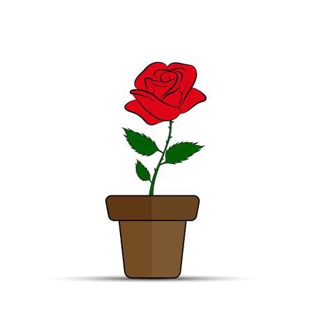 Red rose flower in flower pot, flat design