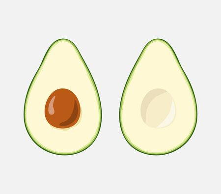 Two slices of avocado with a bone. Color drawing of avocado.   イラスト・ベクター素材