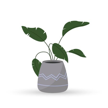 Indoor green plant in a pot. Flat design. Ilustracja