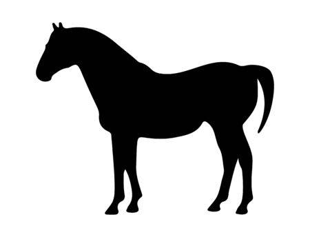 Contour silhouette of a horse. Isolated on a white background. Flat design for postcards, scrapbooking and decoration. Illustration