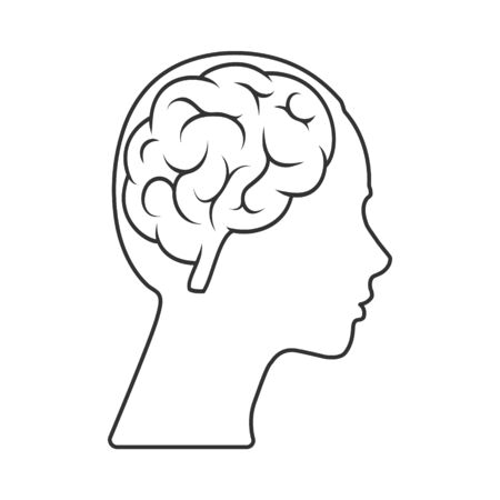 Vector icon of a female head with a brain Empty outline isolated on a white background. Simple design