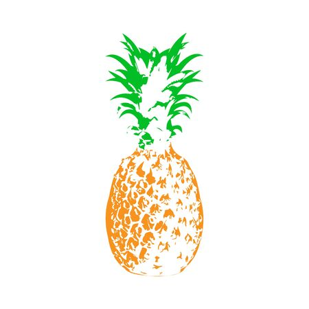 Vector illustration of pineapple in Doodle style for theme design, isolated on white background