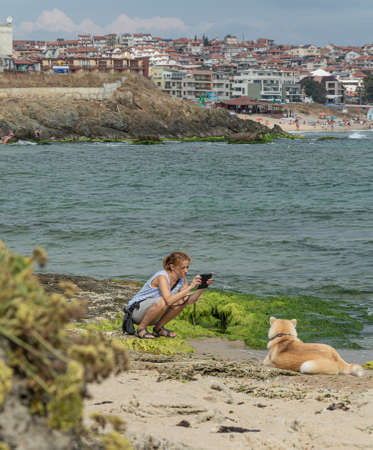 Bulgaria, SOZOPOL - 2018, 06 September: A woman photographs a dog on a rocky beach, blurred background. Stock photo.