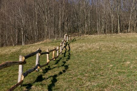 log fence in a grazing meadow for cows