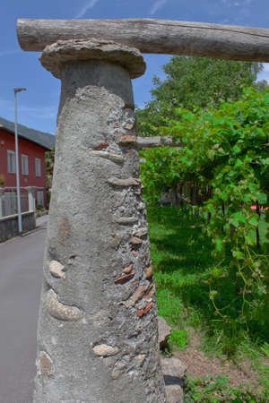 -Tupiun-: a north italian traditional brick and concrete column with granite headboard to support the vineyard Stok Fotoğraf