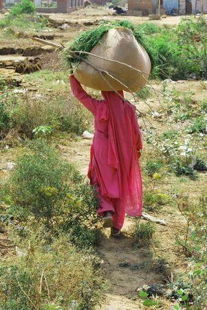 hard working woman: Indian hard working woman Stock Photo