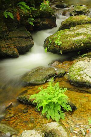 Waterfall on Hoar Oak River near Watersmeet House in Exmoor National Park, Devon Stock fotó - 150295920