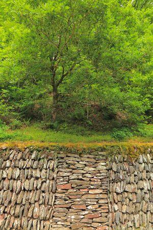 Dry stone wall in Exmoor, Devon