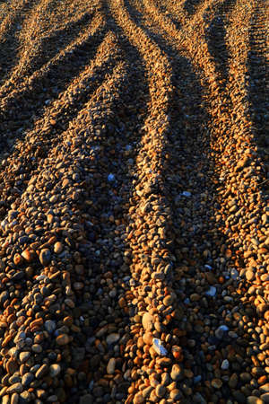 Detail of pebble beach lit by morning sunlight