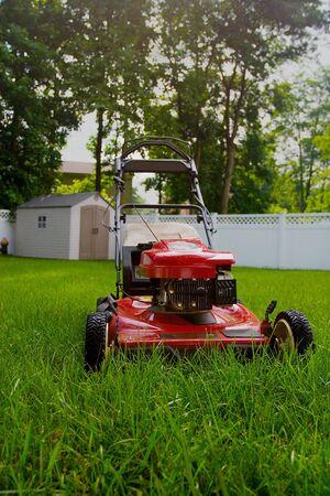 cut grass: Lawnmower waiting to cut the grass in the backyard
