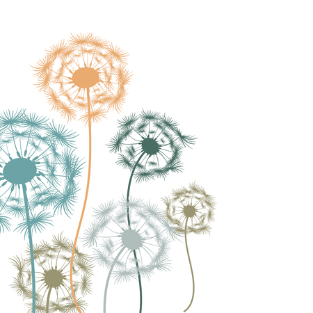 snort: Colorful dandelions on a white background