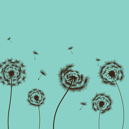 frail: vector illustration dandelion on the blue background Illustration