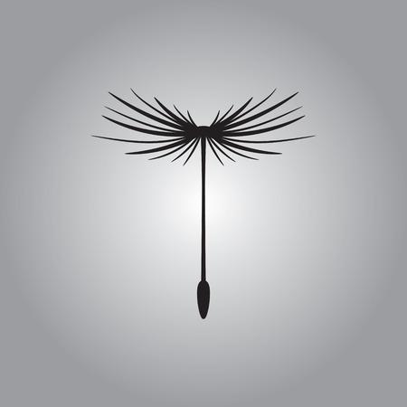 dandelion seed: Dandelion seed, vector icon