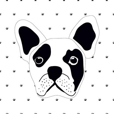 brawny: french bulldog