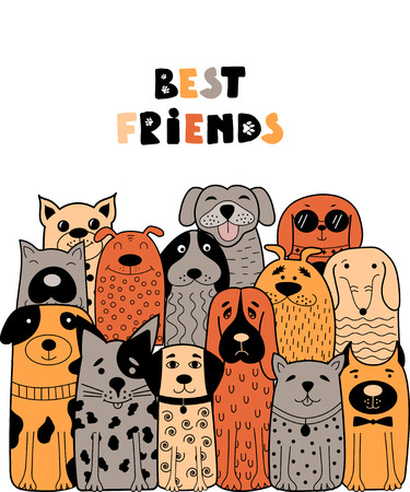 Colorful card with doodle dogs and best friend text vector illustration