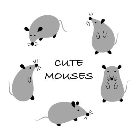 Cartoon rats. Set of 5 cute gray mouses in different poses on a white background. Vector flat illustration.