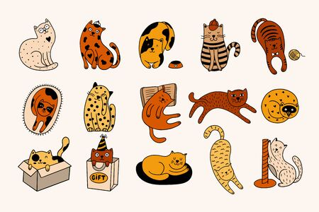 Cute cats collection consists of 15 hand-drawn kittens isolated on a white background. Doodle vector illustration with colorful pets.
