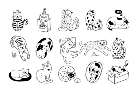 Cute cats collection consists of 15 hand-drawn kittens isolated on a white background. Doodle vector illustration with black and white pets.