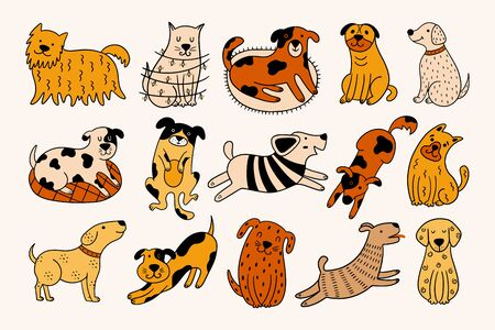 Collection of cute dogs. Set of 15 doodle pets on a beige background. Hand-drawn vector illustration with colorful dogs in different positions.