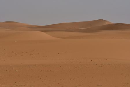 Vast sand desert in the heart of Saudi Arabia