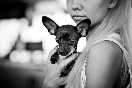 toy terrier: Giovane donna con il suo piccolo giocattolo russo terrier bianco e nero
