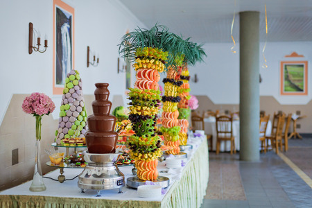 Chocolate fountain and palm-tree from fruits at wedding reception  photo