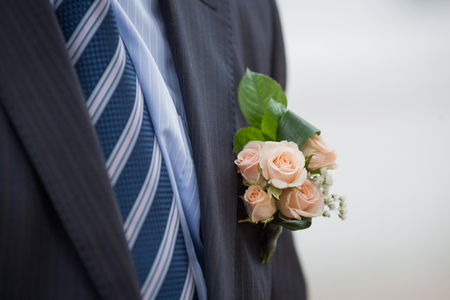 boutonniere: Pink Roses Boutonniere on Formal Black Tuxedo Stock Photo