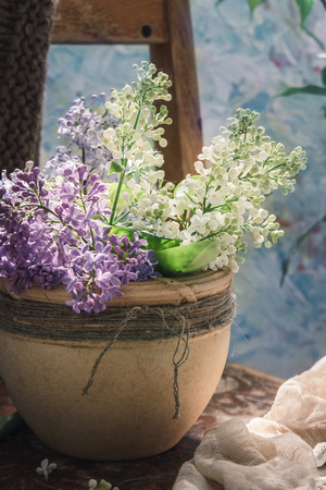 the blossoming lilac branches in clay a pot on the old wooden chair covered woolen a handmade plaid, on a blue background 版權商用圖片