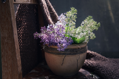 the blossoming lilac branches in clay a pot on the old wooden chair covered woolen a handmade plaid, top view