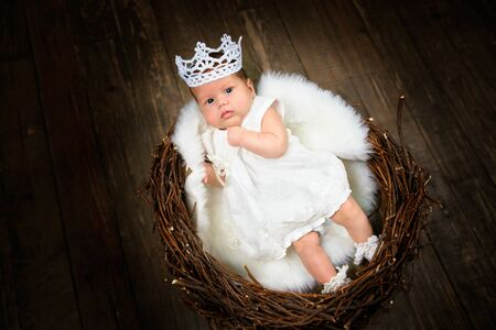 A little girl aged 2 months in a white dress and crown lies on white fur in a nest of branches