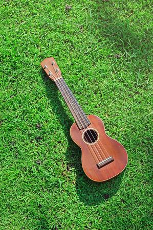 ballad: êêUkulele on field of grass Stock Photo