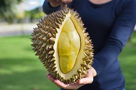 Fruit van een rijpe durian in de handen van de fruittelers Stockfoto